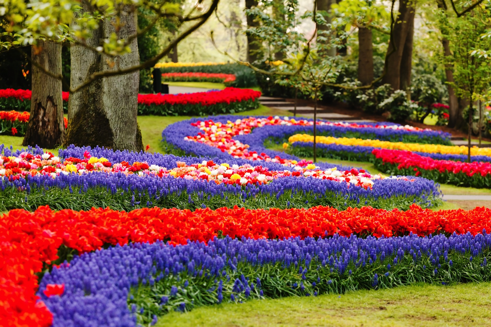 Keukenhof The Largest Flower Show In The World Near