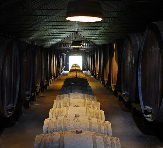 setubal_wine