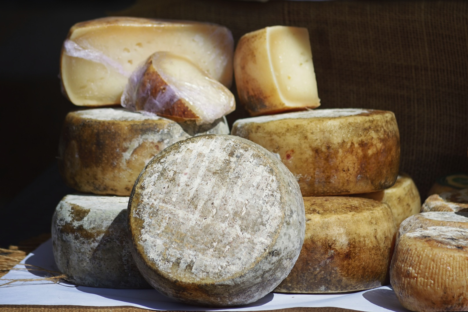 Amsterdam capitale fromage