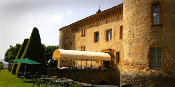 Private tour in Lyon, Beaujolais castle vine yard