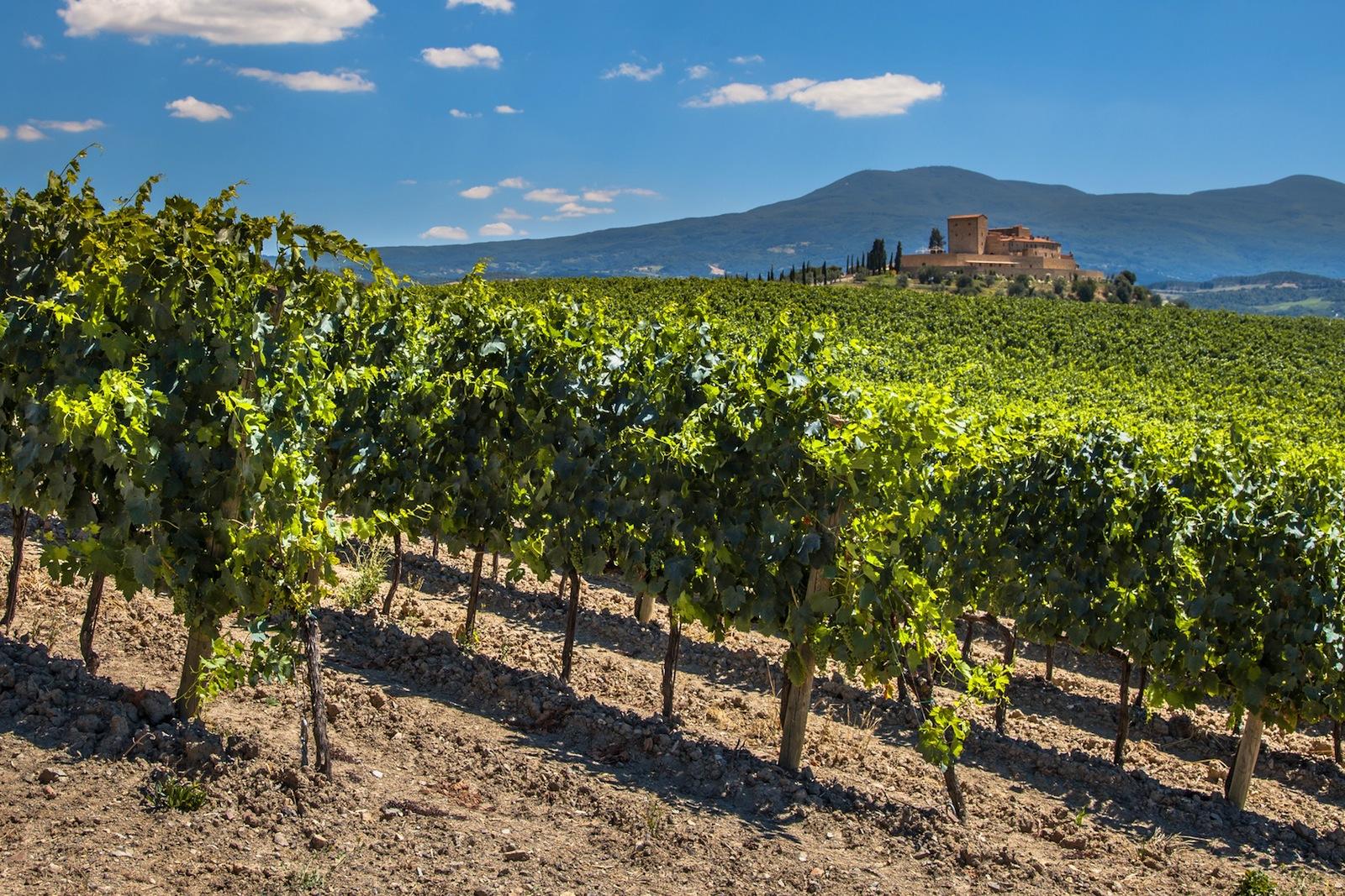 Bordeaux, capitale mondiale du vin