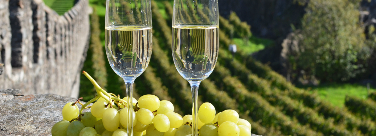 Private and guided tours of Champagne from Paris