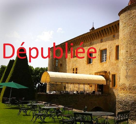 Private tour in south of Beaujolais and tea-time in Château de Bagnols