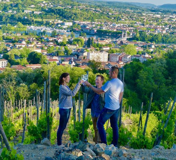 Private tour of Vienne and wine near Lyon