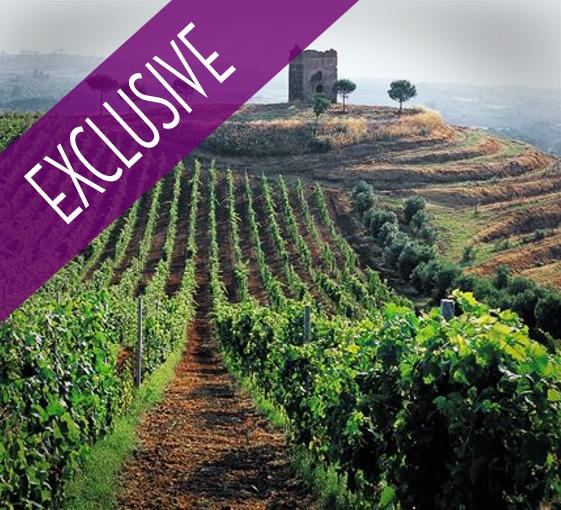 Private tour of countryside and wineries near Rome