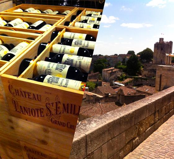 Private wine tasting tour in the Saint-Emilion near Bordeaux