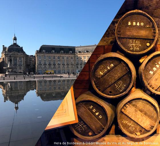 Private tour of wine and history in Bordeaux