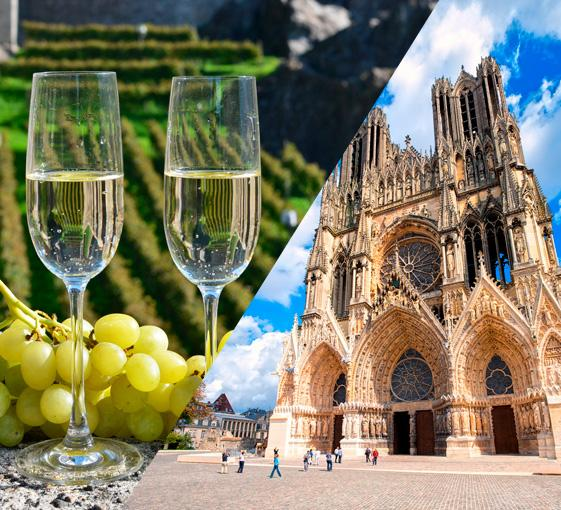 Private oenological and history tour around Reims in departure from Paris