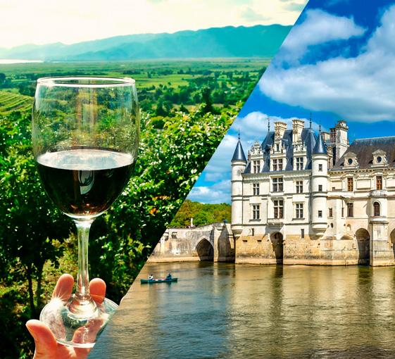 Private history and oenology tour in Val de Loire region from Paris