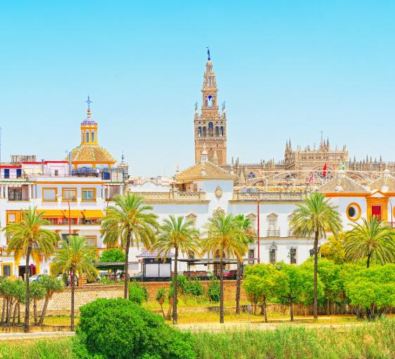 Private panoramic walking tour in Seville